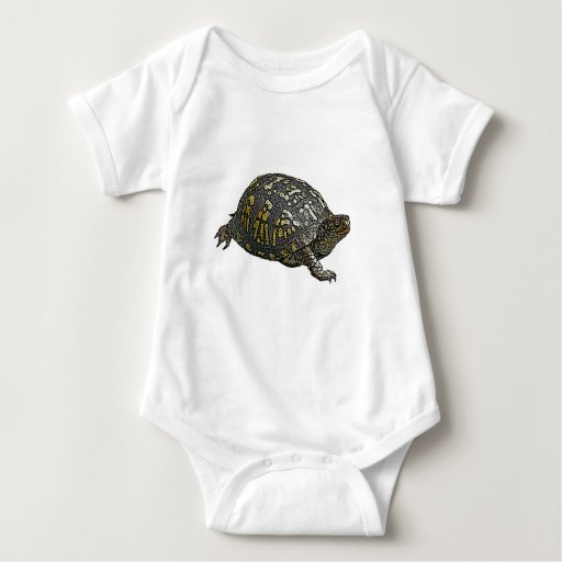 Artículos de coordinación del este de la tortuga poleras