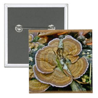Artículos de coordinación púrpuras del hongo de es pin cuadrada 5 cm