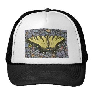 Artículos de la mariposa de Swallowtail del boda Gorro De Camionero