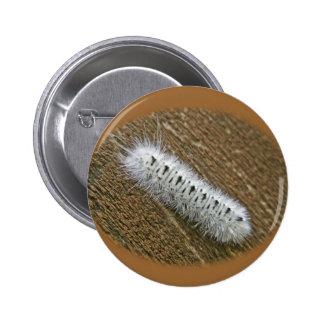 Artículos de la polilla de mechón de la nuez dura  pin redondo de 2 pulgadas