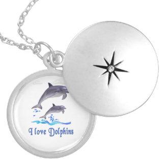 Artículos de los delfínes medallones