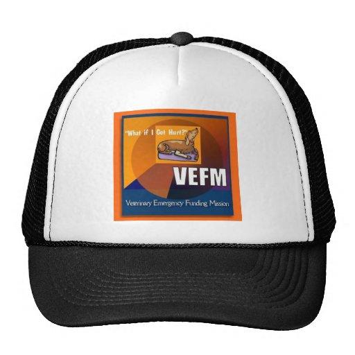 Artículos de VEFM Gorras