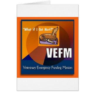 Artículos de VEFM Tarjetón