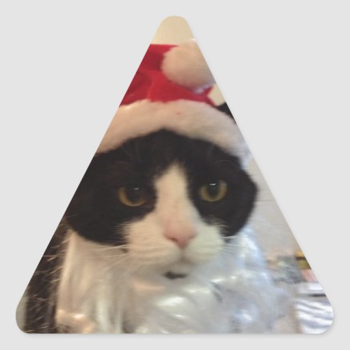 Artículos del día de fiesta del gatito de Poopy Pegatina Triangular
