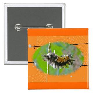 Artículos del naranja de Caterpillar de la polilla Pin
