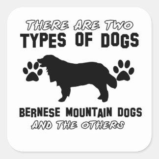 artículos del regalo del perro de montaña bernese pegatinas cuadradases personalizadas