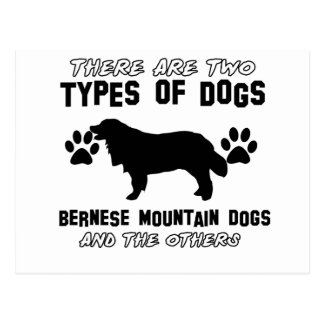 artículos del regalo del perro de montaña bernese postal