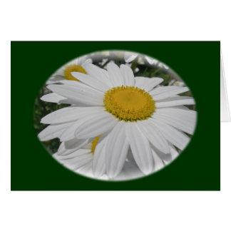 Artículos florales del Wildflower de la margarita  Tarjeta De Felicitación