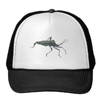 Artículos negros adultos del insecto de asesino (R Gorros