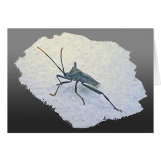 Artículos negros adultos del insecto de asesino (R Tarjeta De Felicitación