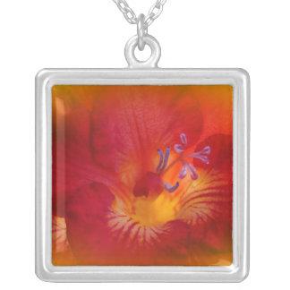 Artículos rojos de la flor del Freesia Colgante Cuadrado