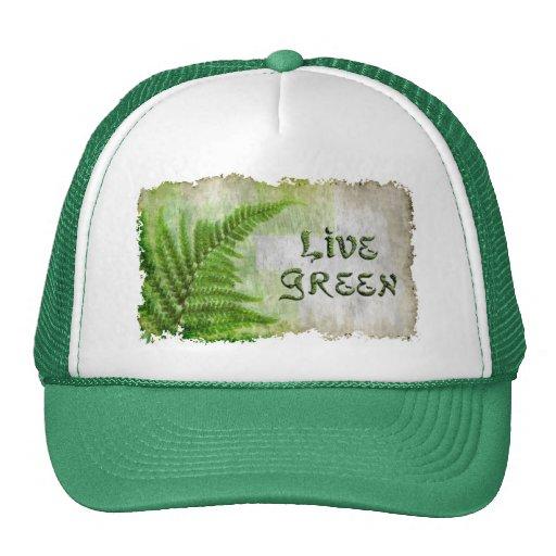 Artículos VERDES VIVOS del regalo de Eco Enviro pa Gorra
