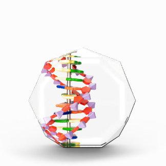 Artificial DNA model Acrylic Award