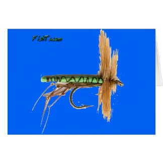 Artificial Fish Baits by FishTs Card