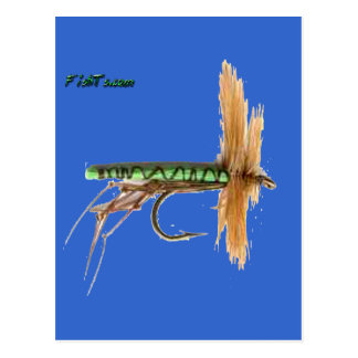 Artificial Fish Baits by FishTs Postcard