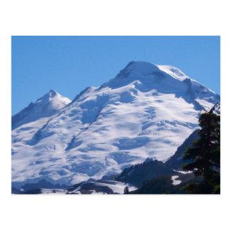 Artist Point Mt. Baker Postcard