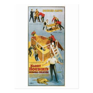 Artista de escape vivo enterrado ~ del vintage de postales