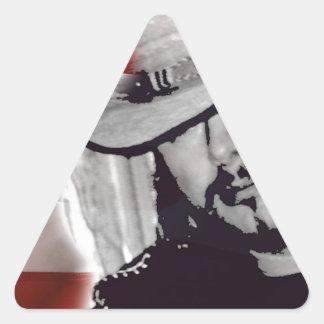Artista del país de maderas de Don Pegatina Triangular