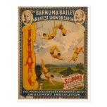 Artistas de trapecio Barnum y Bailey 1896 Postales