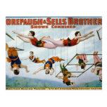 Artistas de trapecio/hermanos de Forepaugh y de Se Tarjetas Postales