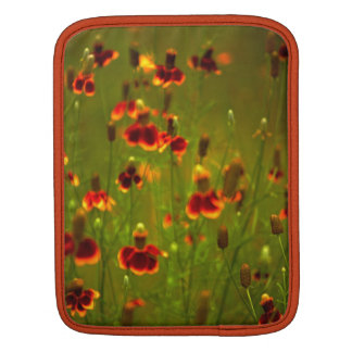 Artistic and Protective I -Pad Case