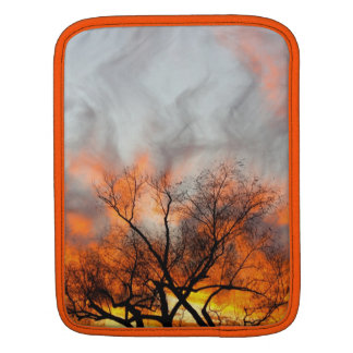 Artistic and Protective I-pad sleeve