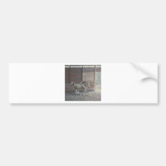 Artistic Arabian Bumper Sticker