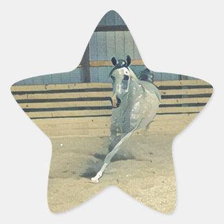 Artistic Arabian Star Sticker