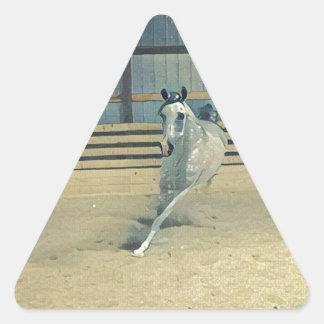 Artistic Arabian Triangle Sticker
