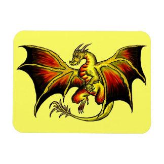 Artistic attitude colorful dragon rectangle magnet