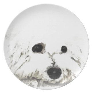 Artistic Bichon head aquarelle Plates