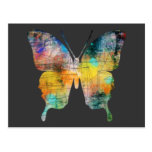 Artistic Butterfly Postcard