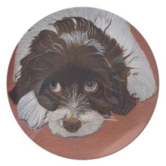 Artistic Cocker Spaniel Plate