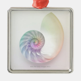 Artistic colored nautilus image metal ornament