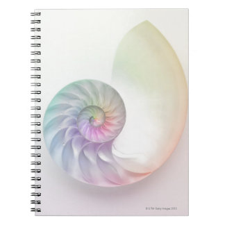 Artistic colored nautilus image spiral notebook