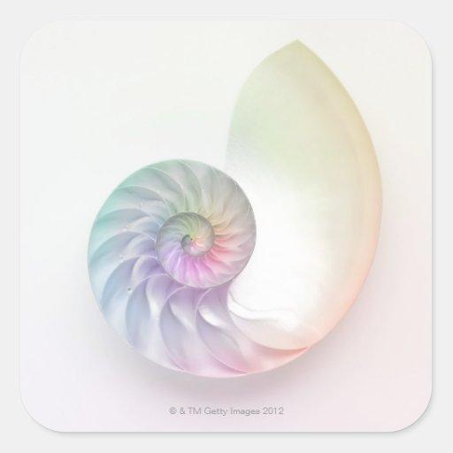 Artistic colored nautilus image square sticker