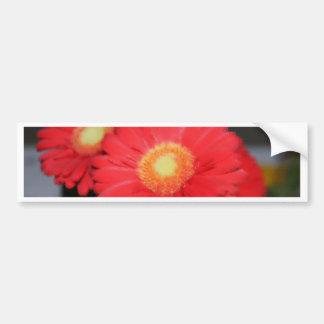 Artistic Gerber Daisy Bumper Sticker
