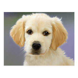 Artistic golden retriever puppy portrait postcard