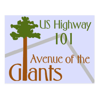 Artistic Image Avenue of the Giants Postcard