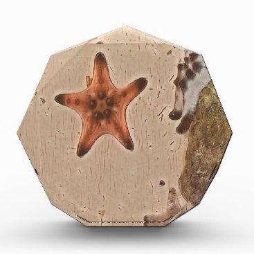 Beach Themed Artistic Neutral Tans Starfish On Sand Award