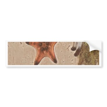 Beach Themed Artistic Neutral Tans Starfish On Sand Bumper Sticker