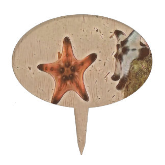 Artistic Neutral Tans Starfish On Sand Cake Topper