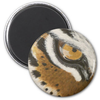 Artistic painted tiger's eye design fridge magnets