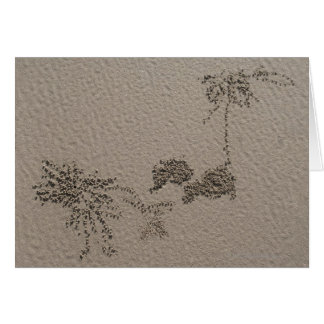 Artistic patterns made by Ghost Crabs  on Four Greeting Cards