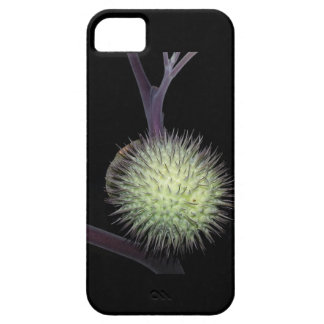 Artistic Phone Case iPhone 5 Cover