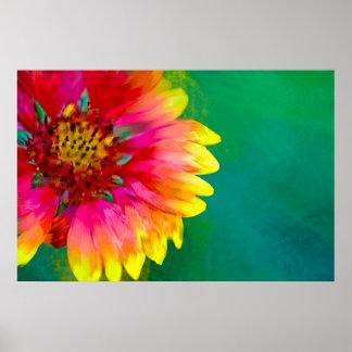 Artistic rendition of Indian Blanket flower Poster