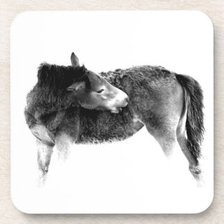 Artistic Wild Horse Foal Beverage Coaster
