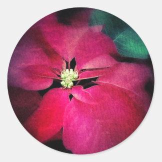 Artist's Poinsettia Sticker
