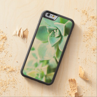 Artsy Green Succulent Flowers Custom Carved Maple iPhone 6 Bumper Case