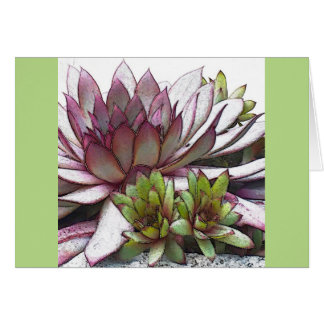 Artsy Hens and Chicks Card